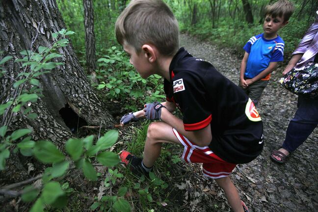 PHIL HOSSACK / WINNIPEG FREE PRESS</p><p>Grayson Kroeker, 10, probes inside a potential rock hideout.</p>
