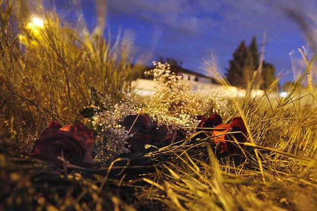 A bunch of roses sit in the long grass at the scene of a vehicle collision on Gateway Drive at Budden Drive Sunday. The collision, which occurred Saturday evening, claimed the lives of a 42-year old woman and her 23-year-old daughter.
