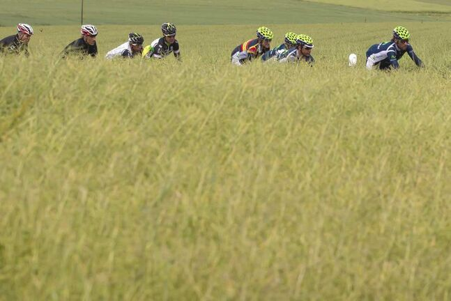 A pack of riders cycles during the 5th stage, a 192.7 km race from Trimbach/Olten to Gansingen, at the 76th Tour de Suisse cycling race, near Gansingen, Wednesday, June 13, 2012.