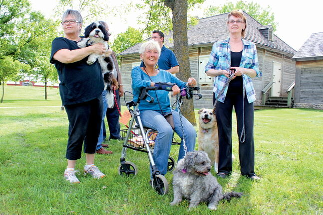 From left: Point Douglas residents Roanna Hepburn, Chris Burrows and Michelle Bruce, with pups Bentley, Zarzy and Gabe, took to Joe Zuken Park last week.