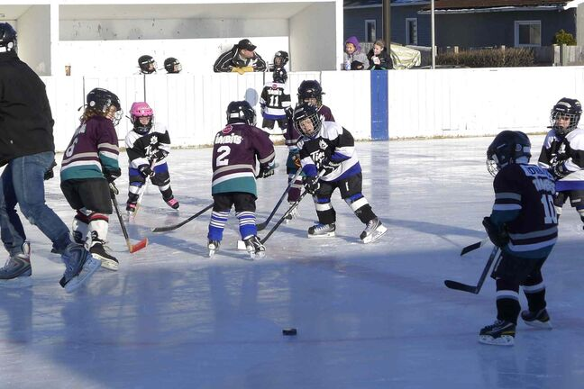 In this file photo, young hockey players enjoy some time on the ice at NGCC.