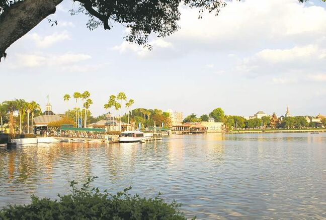 Visitors who rent autos to visit Florida and its theme parks no longer require international driving permits.