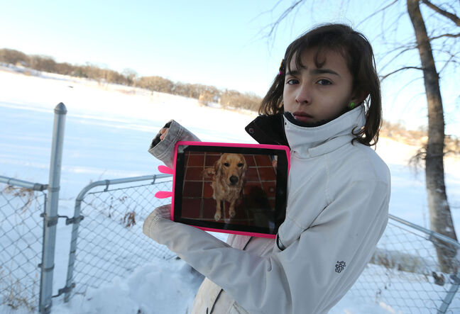 Carolina Amador, 11, shows off a photo of her dog, Talia, a female cocker spaniel-Labrador mix, who ran away from the family's Glenwood Crescent yard and onto the Red River just a day after moving to Winnipeg from Colombia.