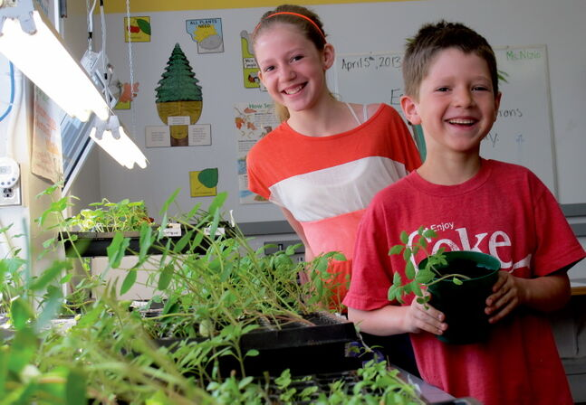 Grade 6 student Emma Almdal (left), and her little brother Spencer, in Grade 3, helped plant herbs and are excited for them to get hung on the fence.