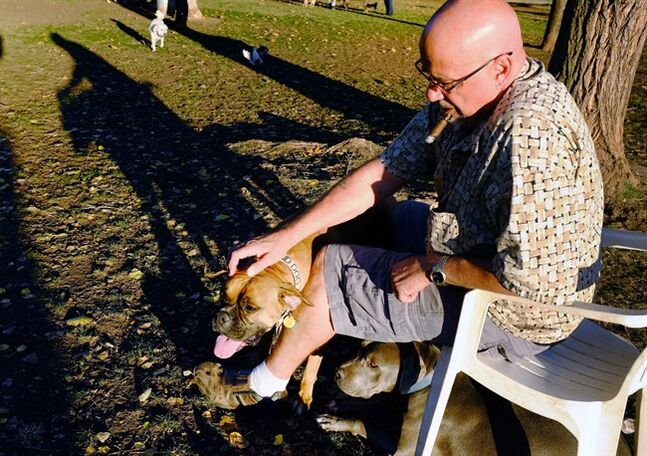 In this Sunday Dec. 1, 2013 photo, Jerry Ericksen pets his blind Boxer, 3-year-old Buster, at the Sepulveda Basin Dog Park in the Encino section of Los Angeles. Ericksen has two dogs and they have different needs that require different languages. Forest, a pit bull that was abused and starved before Ericksen got him, is still very timid and spends his time at the dog park hiding under Ericksen's chair. Dr. Gary Weitzman, president of the San Diego Humane Society, has worked with tens of thousands of stray dogs over the last quarter century and says there is no question that pets and people communicate, but some are getting more out of it than others. (AP Photo/Richard Vogel)