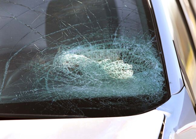 One witness from the scene at Bishop Grandin Boulevard and St Anne's Road said two youths were hit, with one hitting the van's windshield.
