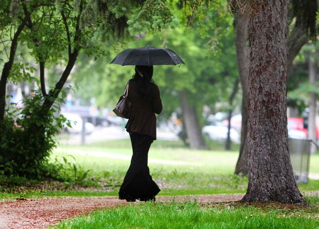A lady walks in the rain holding her umbrella through La Verendrye Park Saturday.