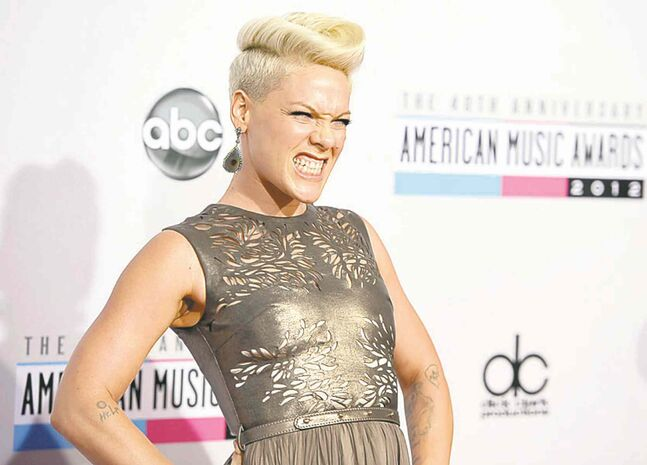 Pink: show postponed to Jan. 14