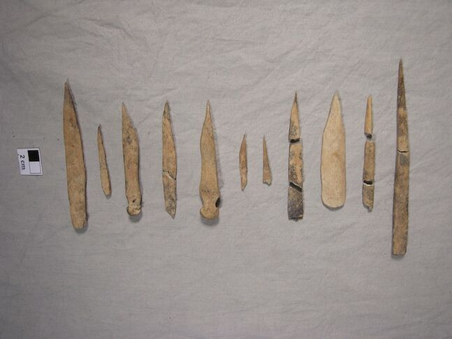 Awls found in the archeological dig are shown.