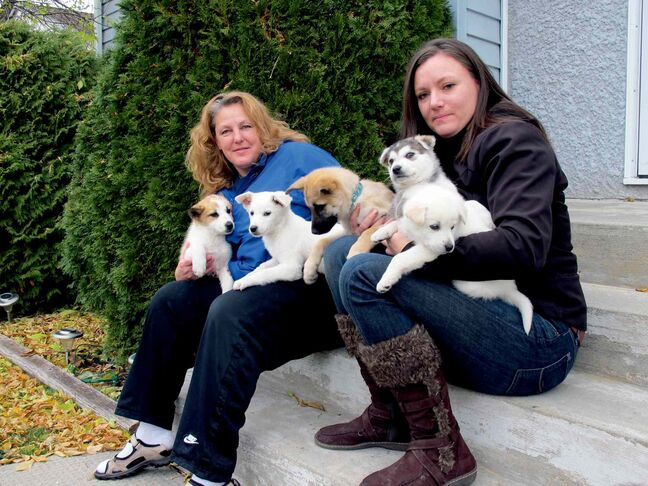 Debra Vandekerkhove (left) and Jill Britton of the Norway House Animal Rescue with a number of puppies looking for new homes. For more information on the puppies shown, visit jennsfurryfriendsrescue.org