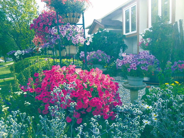 Lorna Carandang's garden in The Maples last summer. Lorna was the Winnipeg in Bloom second place winner in 2012.