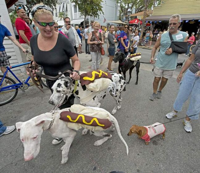 Sheila Tabone, left, has her dogs dressed as impostor
