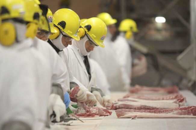 Four of the new cases in Brandon are people employed at the Maple Leaf Foods Inc. hog processing plant, reported Local 832 of the United Food and Commercial Workers Union, which represents them. (Bruce Bumstead / Brandon Sun files)</p>