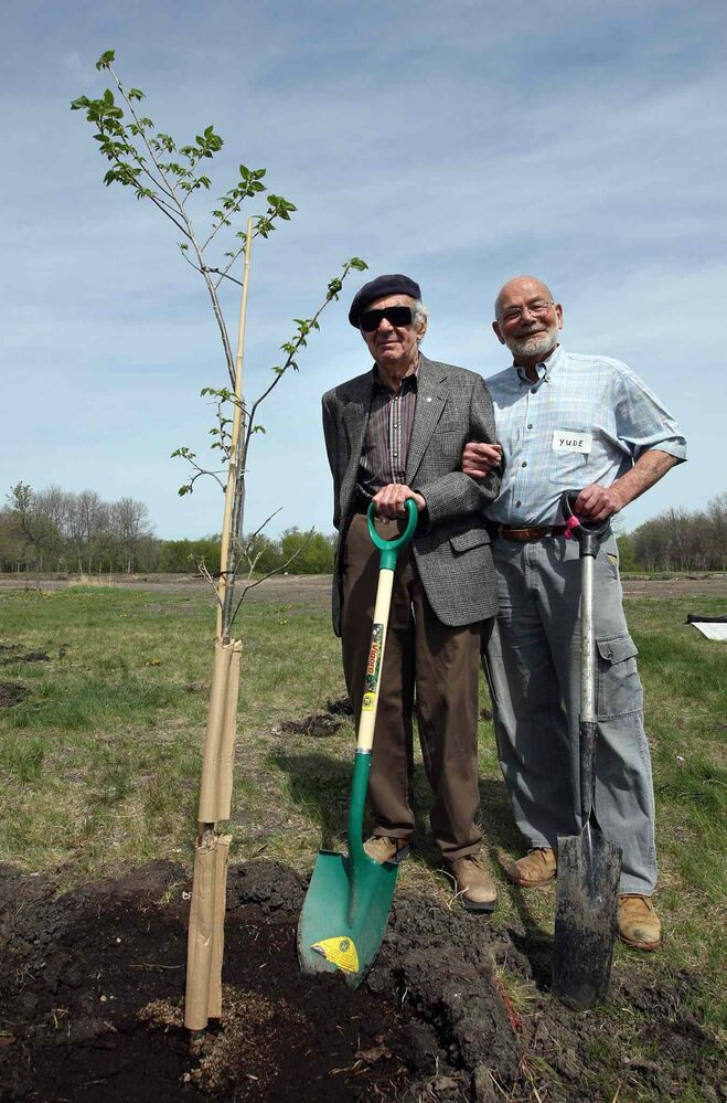 Val Werier, left, and Yude Henteleff plant a tree in Henteleff Park on May 24, 2008. The Henteleff Park Foundation honoured Werier, a Winnipeg Free Press columnist and environment supporter, at the St. Mary's Road park by planting hundreds of trees. (KEN GIGLIOTTI / WINNIPEG FREE PRESS FILES)