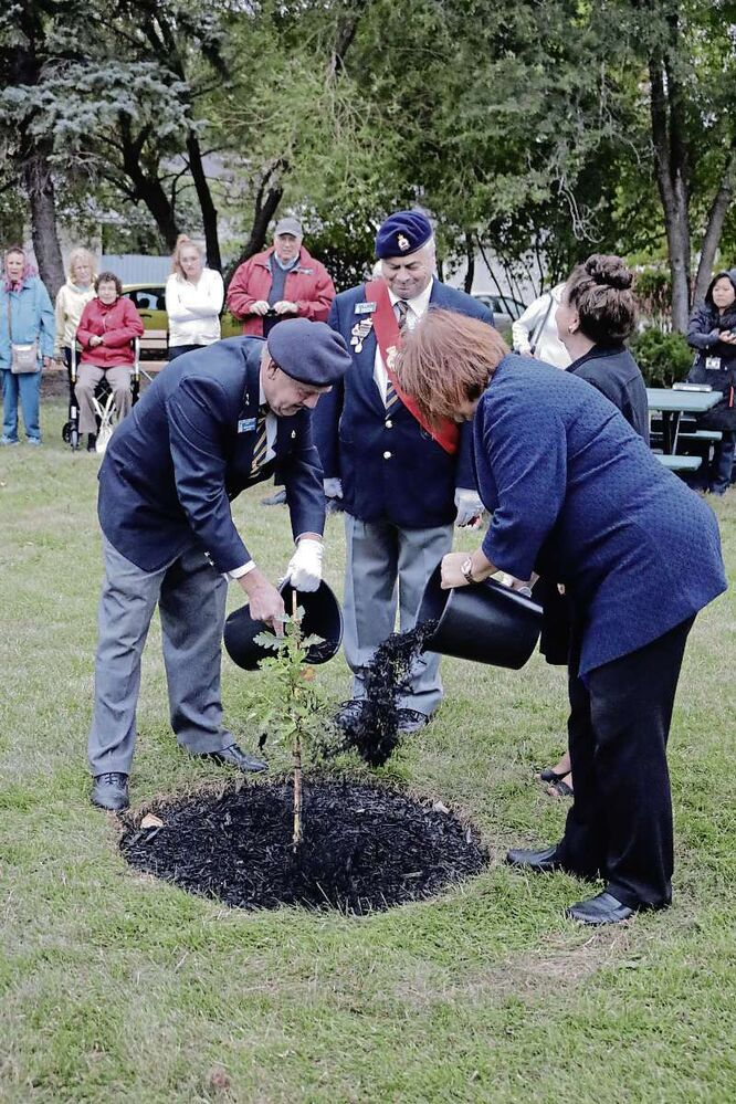 Kildonan-St. Paul MP MaryAnn Mihychuk arranged the acquisition and approval for the tree to be planted at the arboretum at Partridge Avenue and Powers Street. (Photo by Ligia Braidotti)