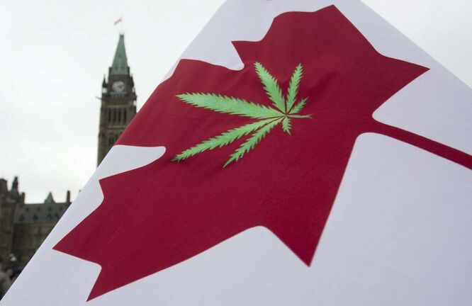 Recreational cannabis becomes legal in Canada Wednesday. (Adrian Wyld / The Canadian Press files)