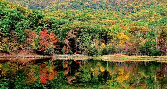 The 6,000-acre Cacapon Resort State Park in West Virginia is a safe-bet destination for fall foliage enthusiasts.