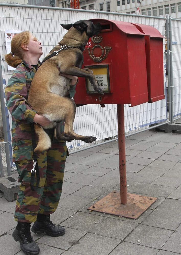 A Belgian army soldier lifts a dog to sniff inside of a mailbox during security checks outside of an EU summit in Brussels on Thursday, Oct. 18, 2012. European leaders are gathering again in Brussels to discuss how to save the euro currency from collapse and support countries facing too much debt and not enough growth. (AP Photo/Yves Logghe)