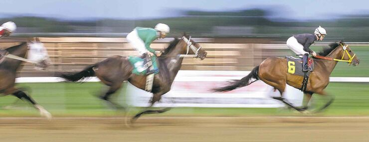 Balooga Bull leads the pack during the Wheat City Stakes at Assinboia Downs Wednesday.