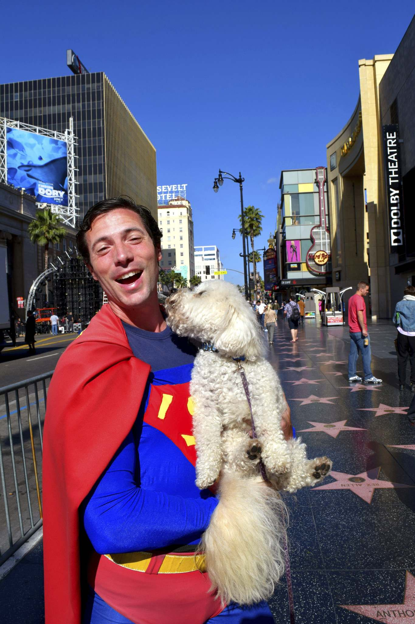 Benji tries to give an actor costumed as Superman a kiss on the Hollywood Walk of Fame.</p>