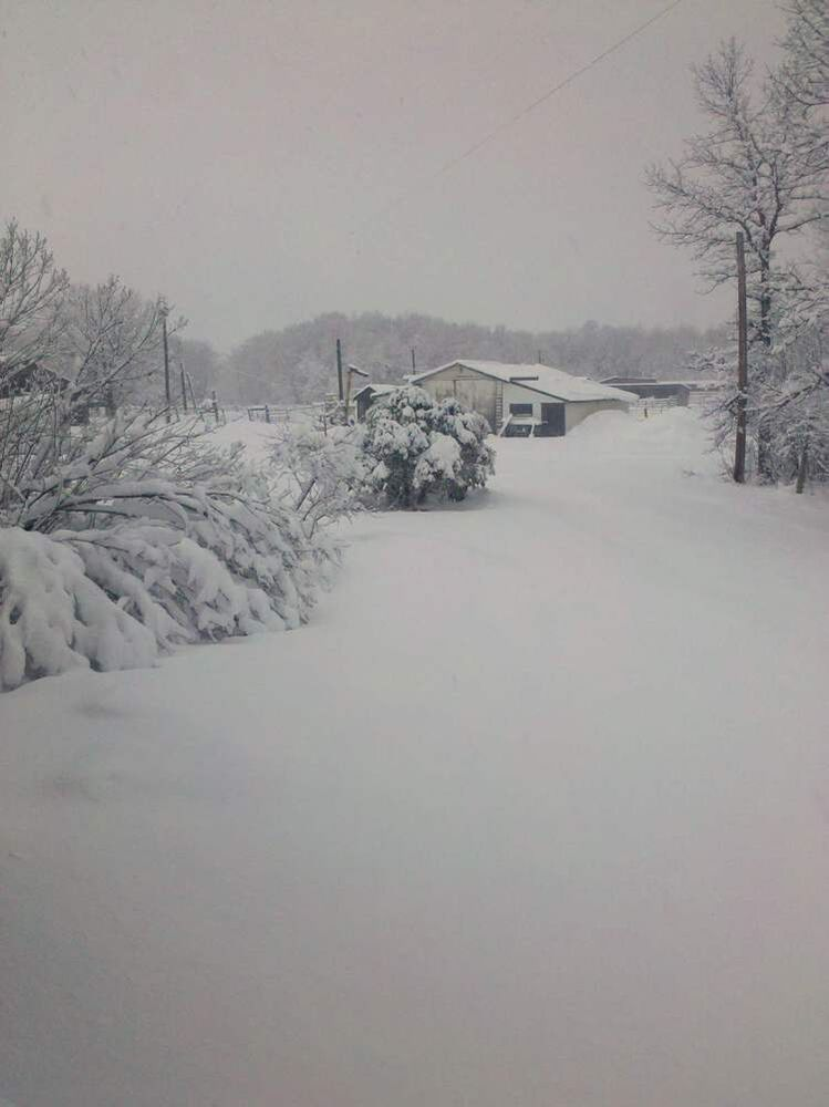 Snow was thick on the ground near Dauphin around 7:30 this morning.   (Michelle Allison. / Submitted Photo)