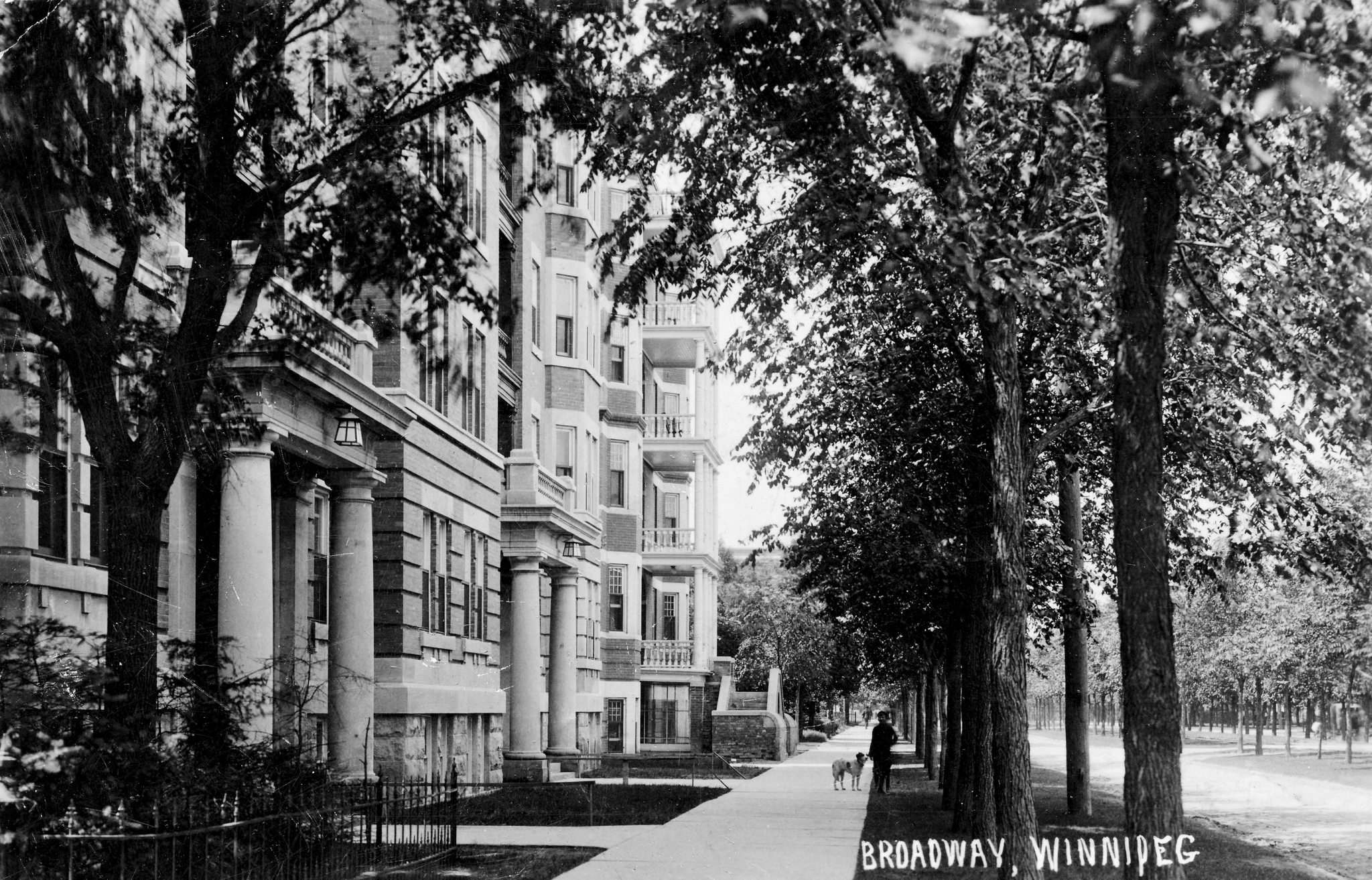 LYALL PHOTO CO. / WINTERBOS ON FLICKR</p><p>A view of Broadway's elms, circa 1910.</p>