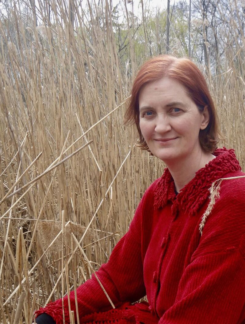 Author Emma Donoghue has been nominated for the Giller Prize for The Pull of the Stars.</p></p>