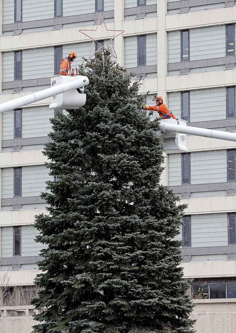 Over 9,000 lights are normally used by city crews to decorate the trees. (Ken Gigliotti / Winnipeg Free Press files)