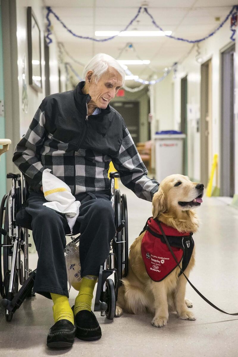 Therapy dog Juno visits Tunney Hovorka at the Misericordia Health Centre in Winnipeg. Juno's calm demeanour made her an ideal candidate for the St. John Ambulance therapy dog program. (Mikaela MacKenzie / Winnipeg Free Press)
