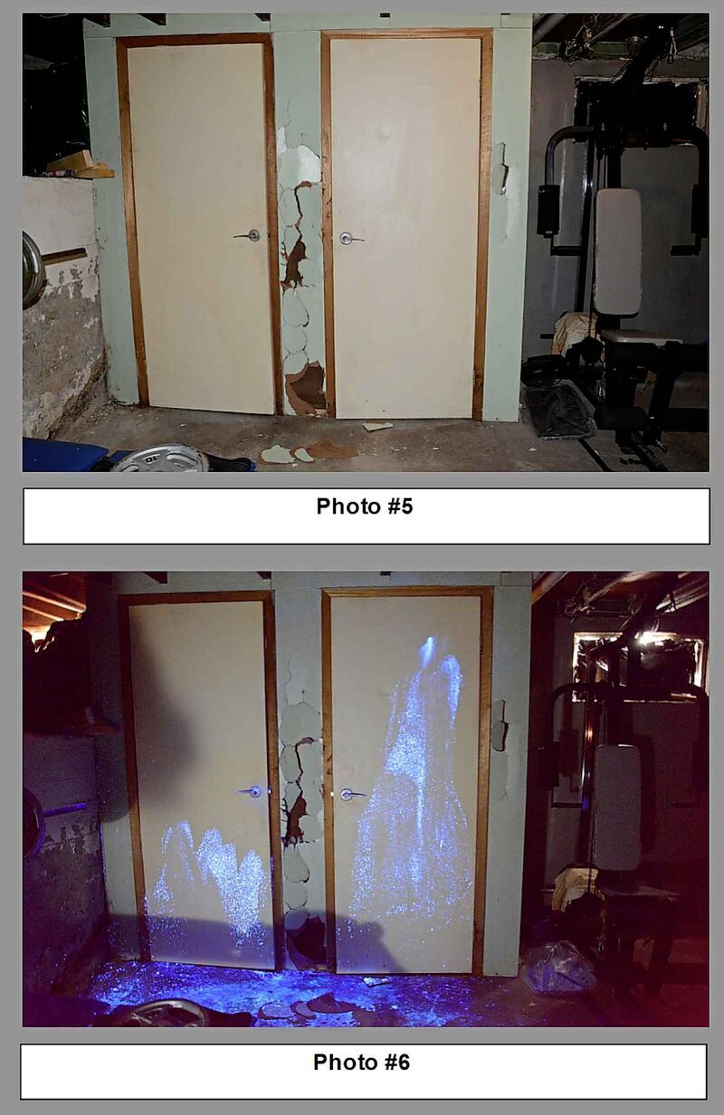 Brett Overby's basement at 341 Burrows Ave. during the forensic search. Christine Wood's blood was found on his weight-lifting bench, on the closet door and on a stair step.