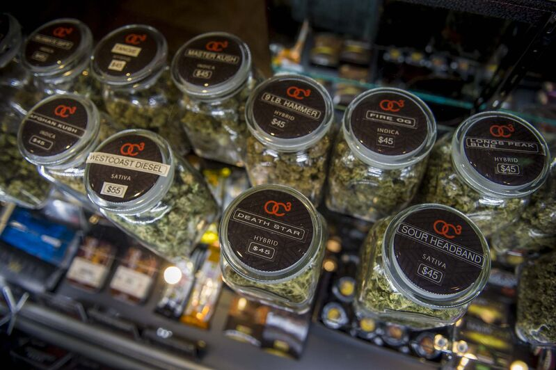 Strains of marijuana are available for patients at the Orange County Cannabis Club in Santa Ana, Calif. (Andrew Seng / TNS / File)</p>