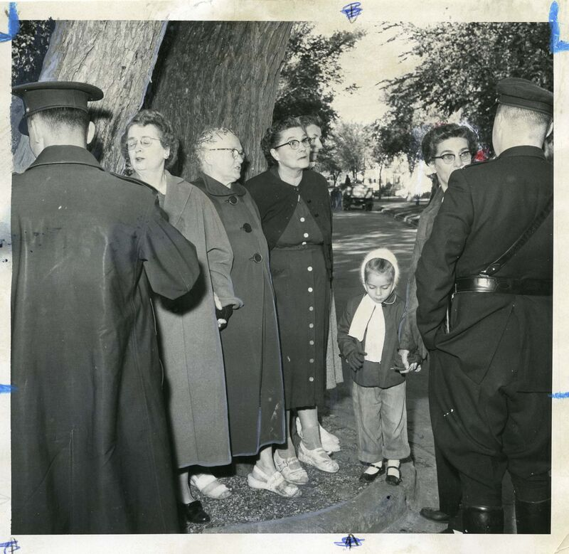 In 1958, the Wild Women of Wolseley formed a barricade to protect their infamous elm from removal.</p>