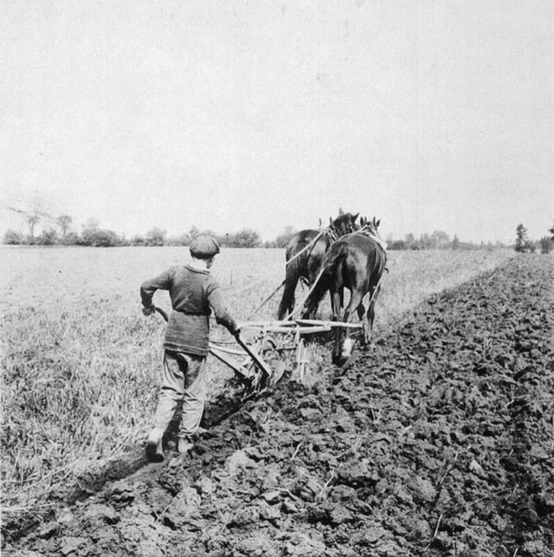 Library and Archives Canada</p><p>A boy ploughing at Dr. Barnardo's Industrial Farm in Russell.