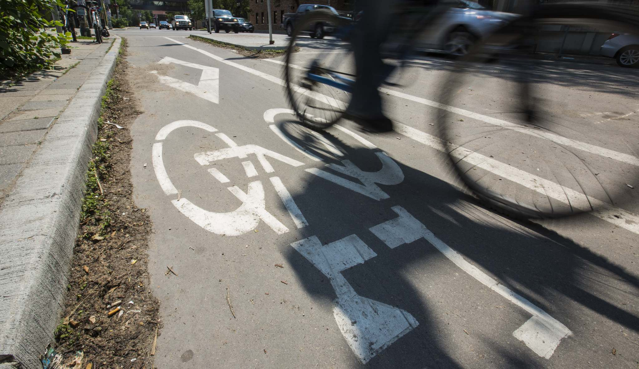 MIKAELA MACKENZIE / WINNIPEG FREE PRESS FILES</p><p>Cyclists use the divided bike lane on Sherbrook Street. </p>
