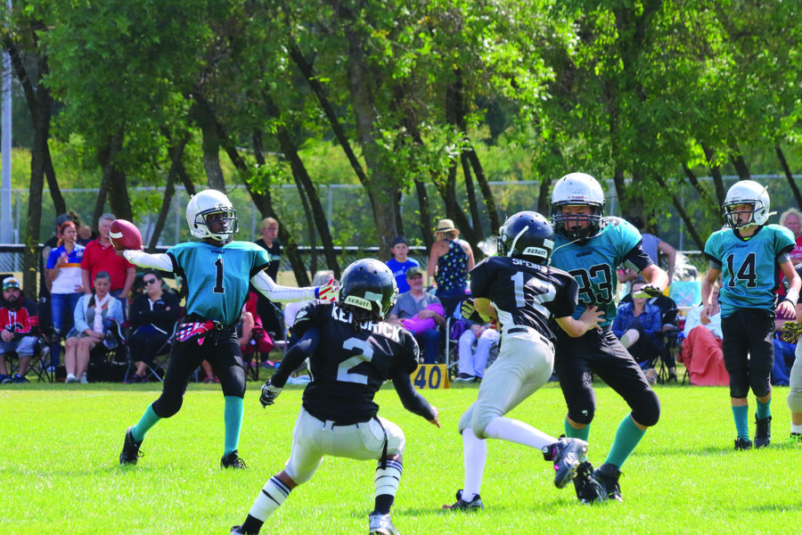 Football registration on tap - The Carillon