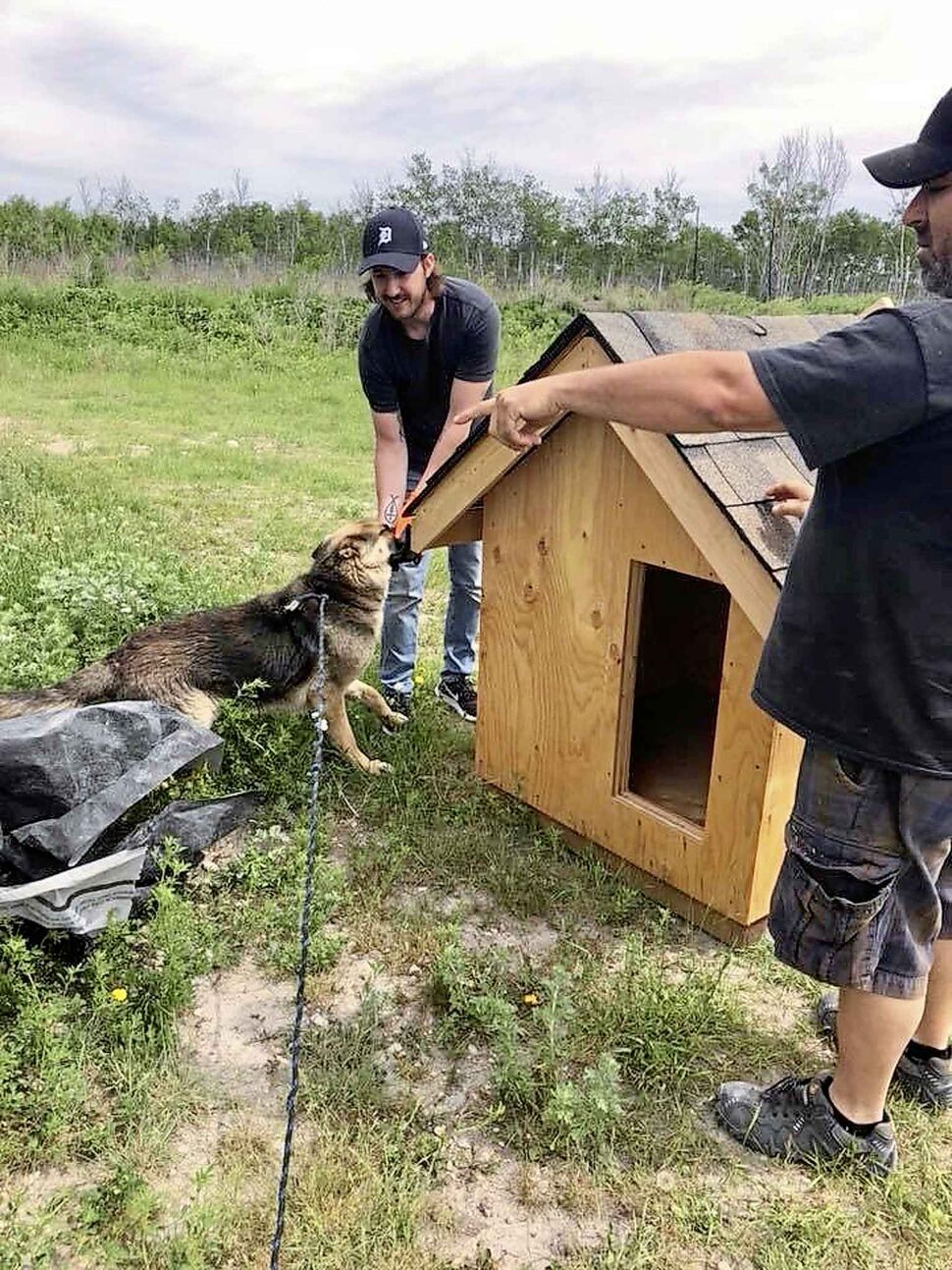 Zach Munn, left, introduces a dog at Ebb & Flow First Nation to its doghouse, while Mike Brambilla helps out.
