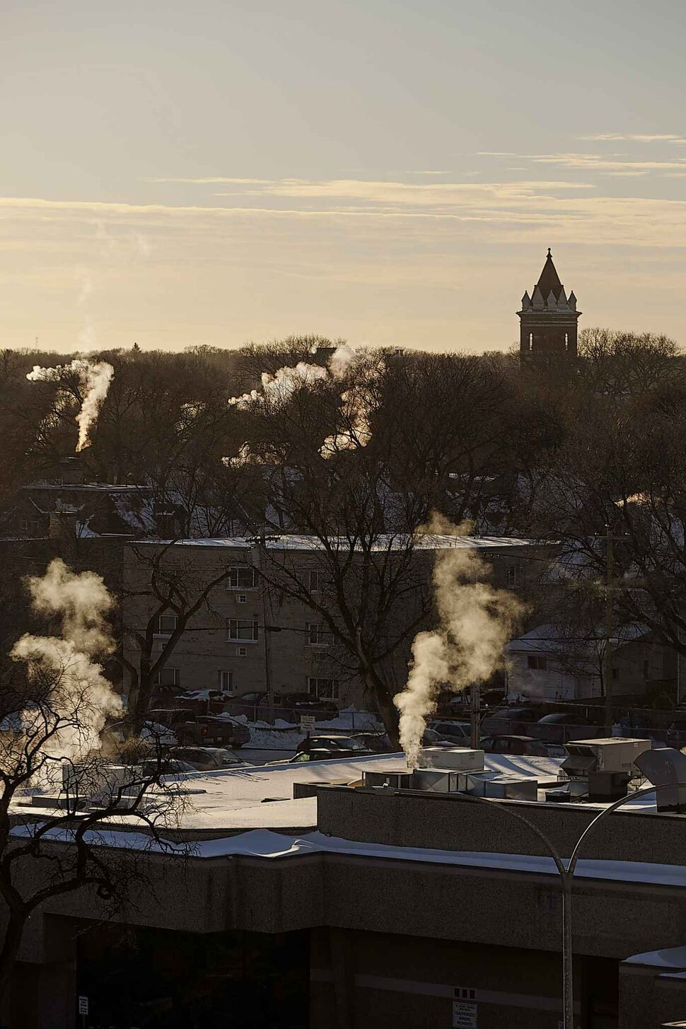 The steeple of the Young United Church rises through the winter canopy of trees as seen from the roof of the Winnipeg Art Gallery Wednesday afternoon. (MIKE DEAL / WINNIPEG FREE PRESS)