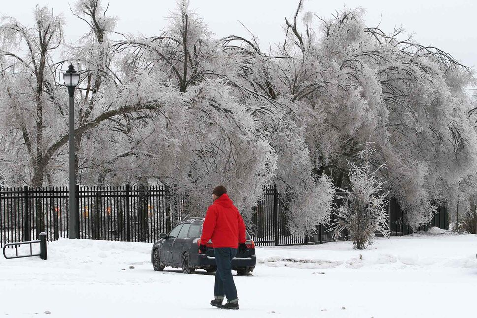 A man walks by trees heavy with ice in Kingston Ont., on Sunday. (Lars Hagberg / The Canadian Press)
