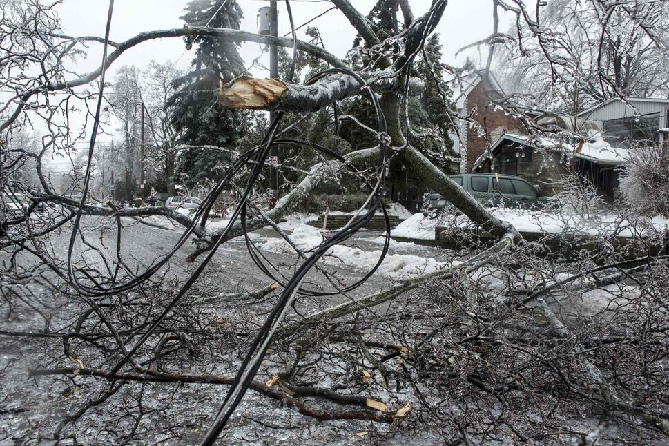 A power line lies tangled in a broken tree branch on a residential street in Toronto on Sunday. (Chris Young / The Canadian Press)