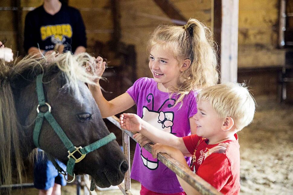 Victoria Whitton, 7 (left), and Preston Whitton, 4, pet the ponies.