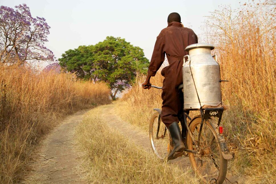 Entrepreneurs use the bike with great success to increase productivity and profits.
