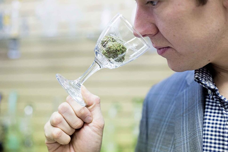 MIKAELA MACKENZIE / WINNIPEG FREE PRESS</p><p>October 5 — Joel Carleton, Manitoba's first cannabis sommelier, demonstrates his techniques at Cannafam in Winnipeg.</p>