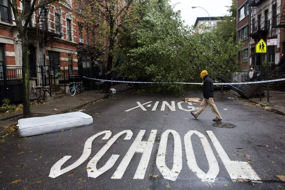 A pedestrian passes a fallen tree on East 7th Street in Manhattan's Lower East Side neighborhood, Tuesday, Oct. 30, 2012, in New York. New York City awakened Tuesday to a flooded subway system, shuttered financial markets and hundreds of thousands of people without power a day after a wall of seawater and high winds slammed into the city, destroying buildings and flooding tunnels. (AP Photo/ John Minchillo)