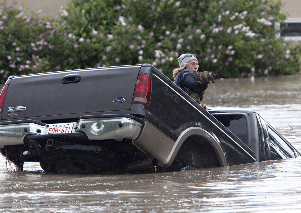 Kevan Yaets crawls out the back window of his pick up truck with his cat Momo as flood waters sweep him downstream and submerge the cab in High River, Alberta. (JORDAN VERLAGE / The Canadian Press)