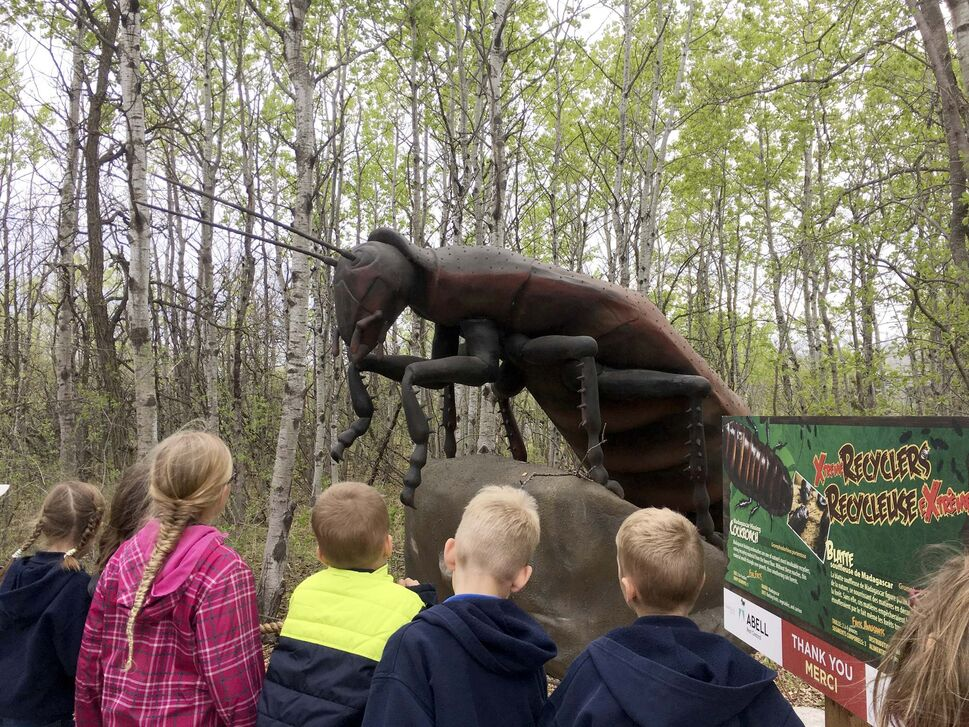 Grade 2 students are fascinated by a giant Madagascar hissing cockroach, one of 19 animatronic insects at the Assiniboine Park Zoo's new Xtreme Bugs exhibit.