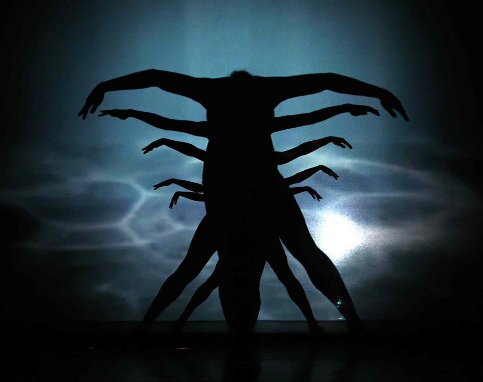 Le Ombré features acrobats and dancers using their silhouettes to create shadow art on both sides of a large screen.  (TREVOR HAGAN / WINNIPEG FREE PRESS)
