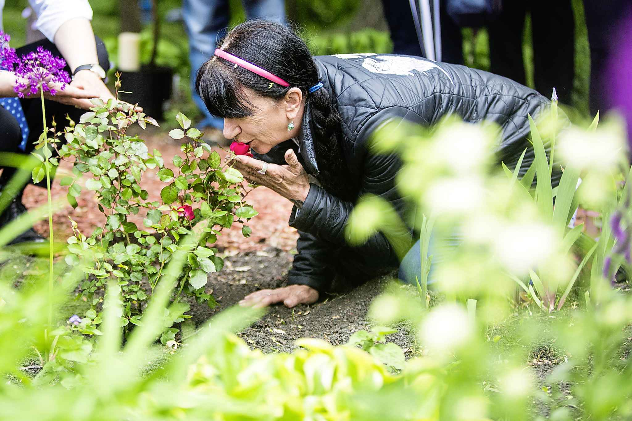 Arlene Last-Kolb, who lost her 24-year-old son Jessie to a fentanyl drug overdose, kisses a rose after planting the bush with Mayor Brian Bowman.
