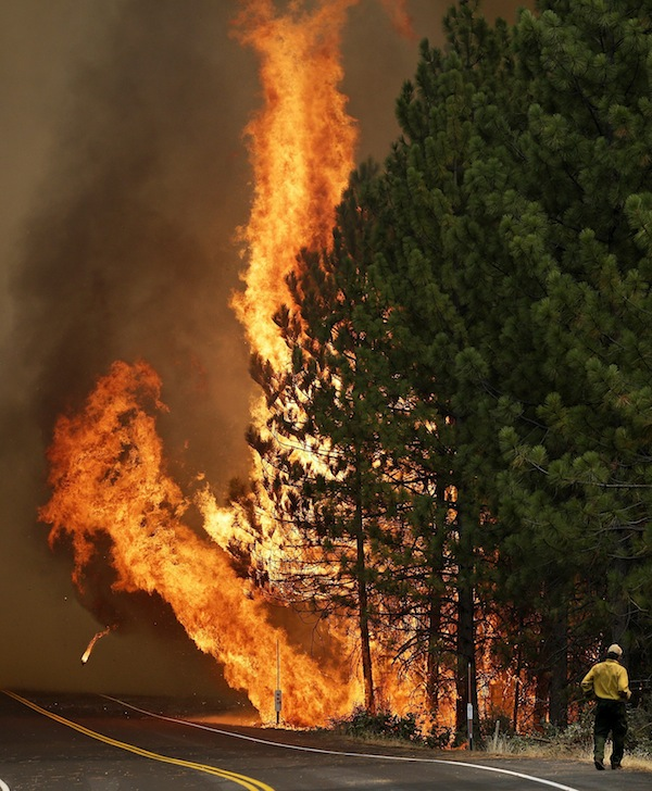 The Rim fire burns along Highway 120 near Yosemite National Park, Calif., on Sunday.