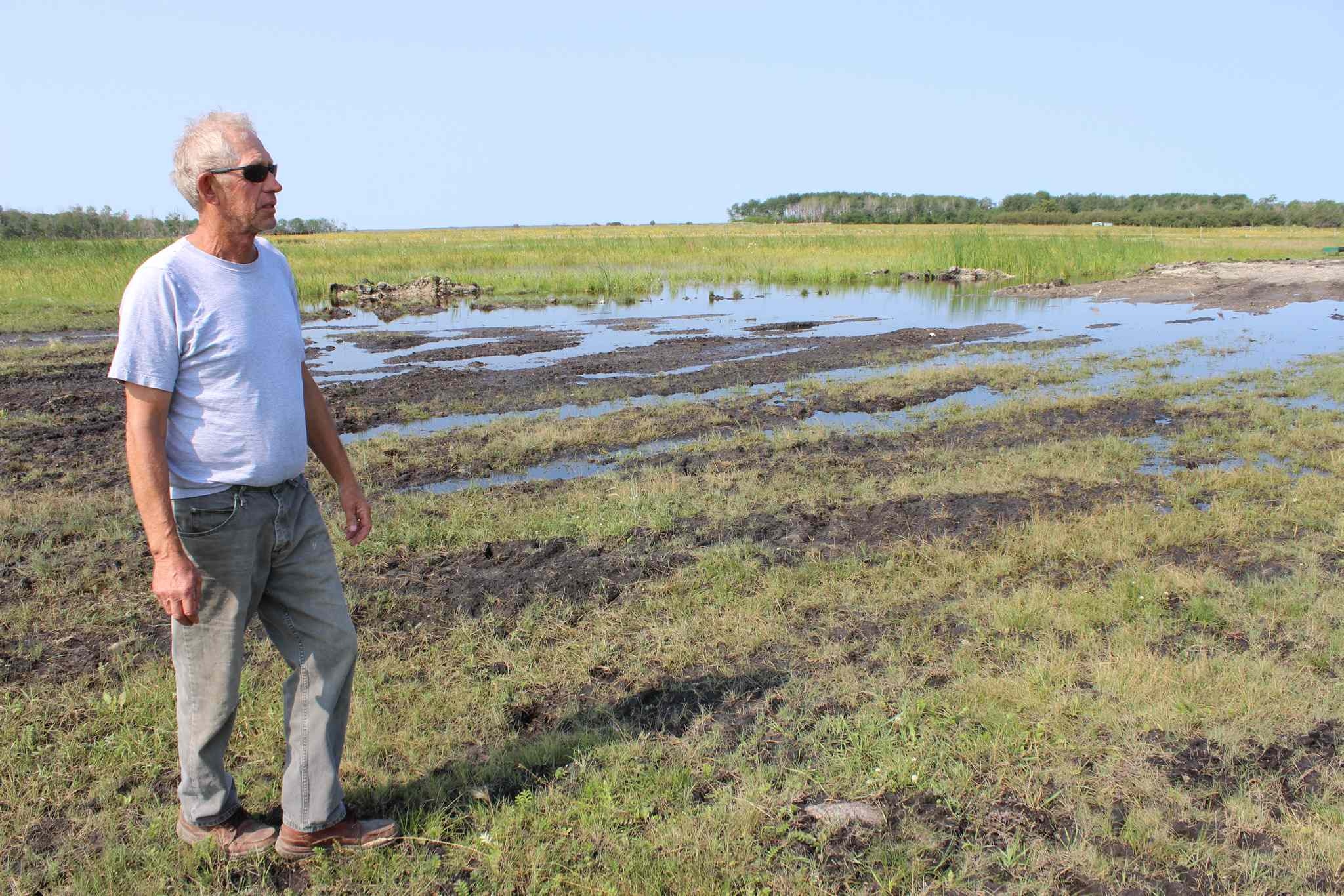 Eddystone farmer Bill Finney inspects his flooded fields. The Portage Diversion has raised water levels and caused problems for farms along Lake Manitoba again.