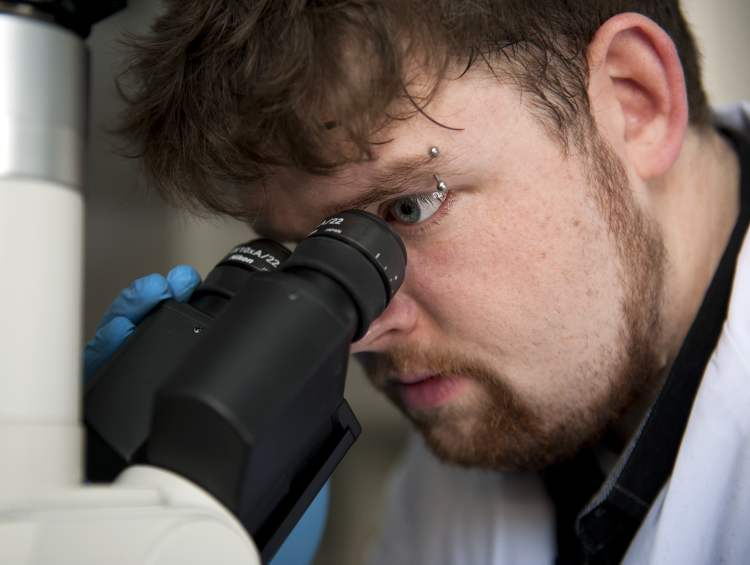 Curran Eggertson, fourth-year mechanical engineering student specializing in biomedical engineering, examines a sample through a microscope in the lab at the University of Calgary. In its 2013 provincial budget, the Redford government has introduced sweeping changes to post-secondary education.